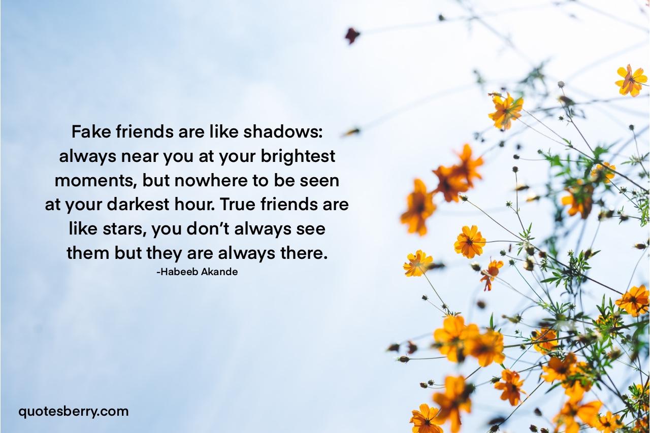 Fake friends are like shadows; True friends are like stars – Habeeb Akande